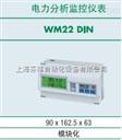 瑞士乐能源管理仪表 上海一级代理 WM系列