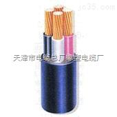 0.6/1KV YJV电力电缆